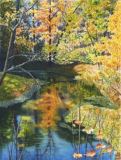 Cathy Hillegas - Autumn On Doe Run- Watercolor - Painting entry - January 2014 | BoldBrush Painting Competition