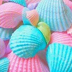 pastel, shell, blue, pink
