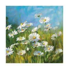 Trademark Fine Art 'Summer Field II' Canvas Art by Danhui Nai, Size: 35 x Blue Flower Painting Canvas, Daisy Painting, Spring Painting, Painting Prints, Art Prints, Flower Artwork, Flower Canvas, Flower Paintings, Canvas Artwork