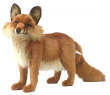 Red Fox by Hansa.