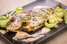 Dorada fish, cucumber, shrimp sauce
