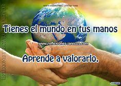Tienes el mundo en tus manos, aprende a valorarlo
