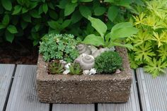 Pflanztröge einfach selbstgemacht -aus einer Zementmischung (Hypertufa)