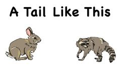 A Tail Like This - Humans and animals share some common features. We use our eyes to see, our nose to smell and our ears to hear. Animals use those same features to help them survive by finding food and sense danger. A Tail Like This will help children learn more about the features of a few common animals they may see everyday