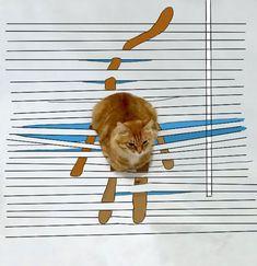Doodle Challenge Transforms Ordinary Cat Photo into Fantastically Amusing Scenes