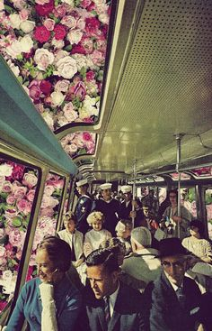 Le train votre rêve ... entourée de roses.