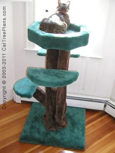 Cat Tree Plan #3 - Skimbleshanks Treehouse for the DIY cat tree maker! Great in front of window punch! I would wrap trunk in sisal for more scratching opportunities! #cats #CatTree