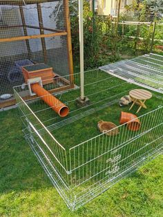 Bearded Dragon Habitat, Bearded Dragon Cute, Rabbit Run, Pet Rabbit, Rabbit Enclosure, Reptile Enclosure, Diy Guinea Pig Cage, Guinea Pigs, Diy Bunny Toys