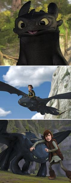 HTTYD Hiccup and Toothless