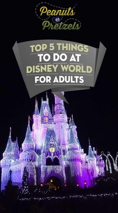Top 5 Things to do at Disney World for Adults - Peanuts or Pretzels