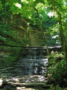 Jackson Falls... just another great find along the Natchez Trace Parkway, Camping Road Trip anyone? Grab your RV or just road trip in your car, this is one camping trip you need on your bucket list :)