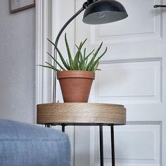 Suchergebnis - Spitzhüttl Home Company - Möbelhaus bei Würzburg Home Accents, House Design, Home Accessories, Home Hardware, Home, Floating Nightstand, Loft Design, Home Diy, Mirror Room Divider