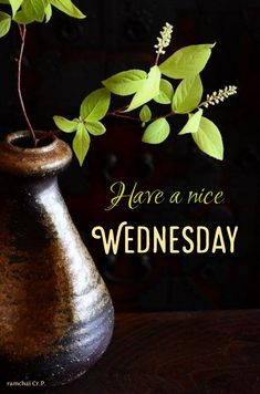 Good Morning Wishes Quotes, Happy Wednesday Quotes, Good Morning Images, Happy Day, Inspiring Quotes, Flower, Black, Happy Good Morning Images, Hapy Day