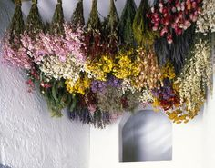 Drying Flowers: Tips, Tricks, and the Best Varieties Dried flowers hanging from ceiling Deco Floral, Arte Floral, Dried Flower Bouquet, Dried Flowers, Flowers Nature, Spring Flowers, Hanging Flowers Wedding, Flower Ceiling, Hanging Herbs