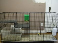 """Most people use """"C&C cages"""" for guinea pigs and rabbits, though they can work for other pets as well (hedgehogs, big ferrets, etc). Description from backyardchickens.com. I searched for this on bing.com/images"""