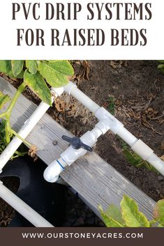 Drip Systems for Raised Bed Gardens Learn how to build and use a PVC Drip Irrigation system in your raised bed gardens this summer. Learn how to build and use a PVC Drip Irrigation system in your raised bed gardens this summer. When To Plant Vegetables, Planting Vegetables, Growing Vegetables, Garden Vegetable Soup, Backyard Vegetable Gardens, Drip System, Drip Irrigation System, Sprinkler Irrigation, Raised Garden Beds