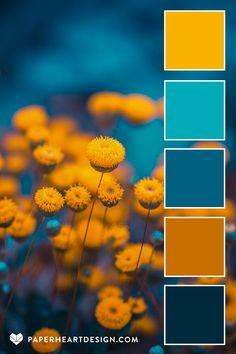 Scheme Color, Hex Color Palette, Gold Color Palettes, Colour Schemes, Color Combos, Color Patterns, Blue Flower Photos, Blue Flowers, Color Palette Challenge