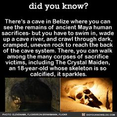 There's a cave in Belize where you can  see the remains of ancient Maya human  sacrifices- but you have to swim in, wade  up a cave river, and crawl through dark,  cramped, uneven rock to reach the back  of the cave system. There, you can walk  among the many corpses of sacrifice  victims, including The Crystal Maiden,  an 18-year-old whose skeleton is so  calcified, it sparkles.  Source