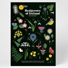 Botanical print by Sally Caulwell illustrating the selection of native flora and fauna from Ireland's colourful hedgerows. Irish Landscape, Irish Design, Essential Elements, Garden Gifts, Botanical Prints, Sally, Nativity, Giclee Print, Art For Kids