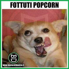 Non perdete alle 15 la nuova puntata del nostro programma su #YouTube! #bastardidentro #popcorn #denti www.bastardidentro.it