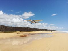 Fraser Island - Exploring the world's largest Sand Island ♡ Part 2. UP, up and away with Air Fraser Island  Cool Dingo guided 2 and 3-day tours of Fraser Island #cooldingo #fraserisland #queensland #australia