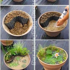 do it yourself pond (Interesting Engineering)