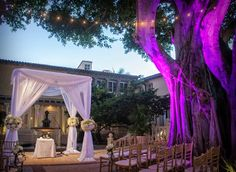 draping, lighting and flowers oh my!  Simple, Elegant and Beatuiful chuppah for an evening outdoor wedding  http://www.themodernjewishwedding.com/page/3