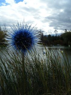 Chihuly Glass (Wyoming)