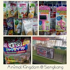 GEX/AB products from Japan are well stocked in Animal Kingdom @ Sengkang's Rivervale Plaza #reinbiotech #abco #exoreptile #bonapet #sgpets #sgcats #sgrabbits #sgbunnies #sghamsters #sgpetshops #petsg #petlovers #petsmy #singaporepets #singaporedogs #sgdogs #singaporecats #bunniesnetwork #mypets #myguineapigs #mycat #myhamsters #myrabbits #mychinchilla #malaysiapets #malaysiacat