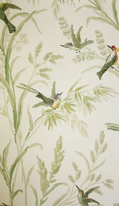 Augustine Wallpaper A printed wallpaper on a light cream background featuring colourful birds amongst muted green and beige wildflowers and plants.