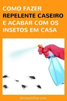 Receita caseira para eliminar os insetos da casa