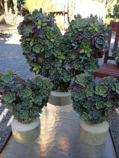 Succulent Heart on Stand- Perfect Valentine's Day Gift, Anniversary Gift or Wedding Decoration on Etsy, $42.00