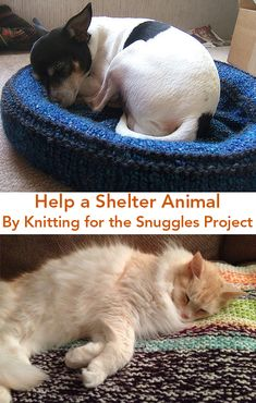 Free Knitting Patterns for the Snuggles Project - If your pets have everything they need, consider knitting a security blanket or bed for a shelter animal through the Snuggles Project to give these animals a little warmth and love while they wait for their forever homes. It also calms them and reduces their anxiety. The Snuggles Project was founded in 1996 by Rae French and also has patterns for crochet and sewn blankets as well as knitting projects.