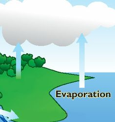Unit 3: Water Cycle
