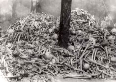 Auschwitz, Poland, 1945, A pile of human bones, after the liberation.