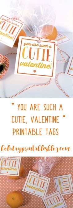 Printable Valentines Day Tags | Free Printable Valentines Tags | You are Such a Cutie Tags | Non Candy Valentines | Free Kids Printables