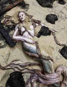 A Mermaid is found along a beach of Kilauea Falls, Hawaii. Unfortunately she already passed away. These pictures are really stunning and we honestly don't know what to say about it. We don't know if this beauty is real or not, it's up to you to judge about these pictures. The first discovery of mermaids was in the Greenland Sea. A close up of the mermaid