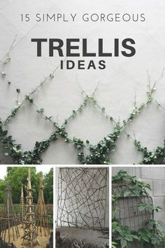 Growing stuff. It's my fav. And there's nothing more fun than growing it up trellises.  The best part about using a trellis (other than making your garden look spectacular) is that you'll free up a significant amount of space.  Take a look at these designs to maximize space and look good. #HTL #landscaping #trellis