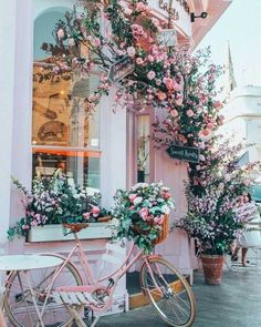 Happy Spring my lovelies, taking it back to the prettiest corner of London during last spring. Looking forward to seeing my favorite cities… Pretty In Pink, Beautiful Flowers, Peggy Porschen Cakes, Flower Aesthetic, Happy Spring, Pretty Pictures, Aesthetic Wallpapers, Beautiful Gardens, Planting Flowers