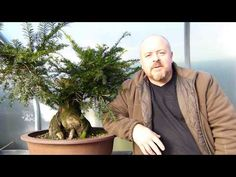 Copy of THE 'Ugly Tree' Becomes Beautiful Bonsai - YouTube