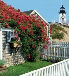 """The island of Nantucket is featured in all of Elin Hilderbrand's novels, including her upcoming one """"The Matchmaker."""" (cottages by the sea cape cod) Nantucket Style, Nantucket Island, Nantucket Cottage, Nantucket Beach, Cottages By The Sea, Beach Cottages, The Places Youll Go, Places To Go, Les Hamptons"""