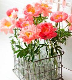 La flor de mi secreto | Ventas en Westwing