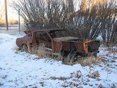 Abandoned autos   abandoned cars