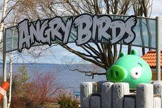 Angry Birds Land on avattu - Jiipeenetti - kouluikäisille tytöille ja pojille Angry Birds, Neon Signs, Top, Crop Shirt, Shirts