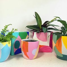 Here's another quick shot of my hand painted pots available at this weekend. Look at how pretty they are all lined… Painted Plant Pots, Painted Flower Pots, Ceramic Plant Pots, Pottery Painting Designs, Art Plastique, Plant Decor, Ceramic Art, Diy And Crafts, Decoration