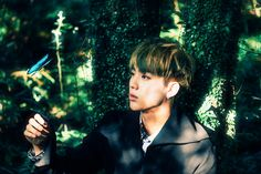 BTS Concept Photos PT.2 | I wish I was that butterfly than I could just sit on him and chill :D