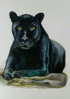 Panther, Animals, Stone, Animais, Animales, Animaux, Animal, Dieren
