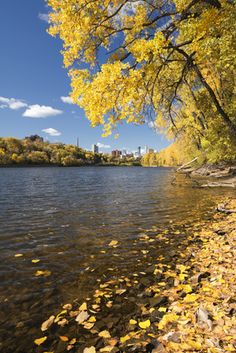 size: Photographic Print: Autumn Colors along the Mississippi River, Minneapolis Skyline in the Distance. Minnesota by PhotoImages : Best Family Vacation Spots, Best Vacations, Minneapolis Skyline, Roadside Attractions, Worldwide Travel, Best Western, State Parks, Minnesota, Travel Inspiration