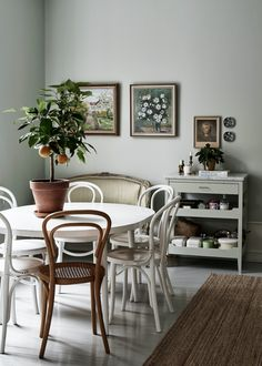 If you have followed my blog you know I have always been crazy about plants. I think your home looks very empty without f...