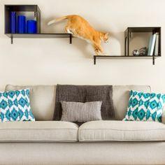 Designer Pet Products The Sophia Wall Mounted Cat Tree - PetSmart